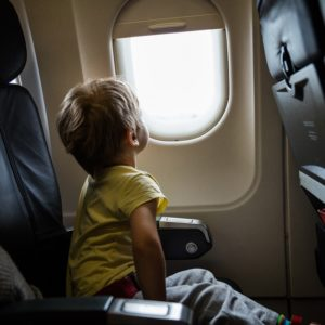 pest control in airplanes