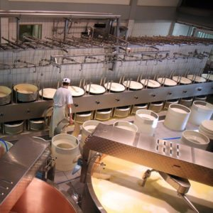 pest control in dairy facility