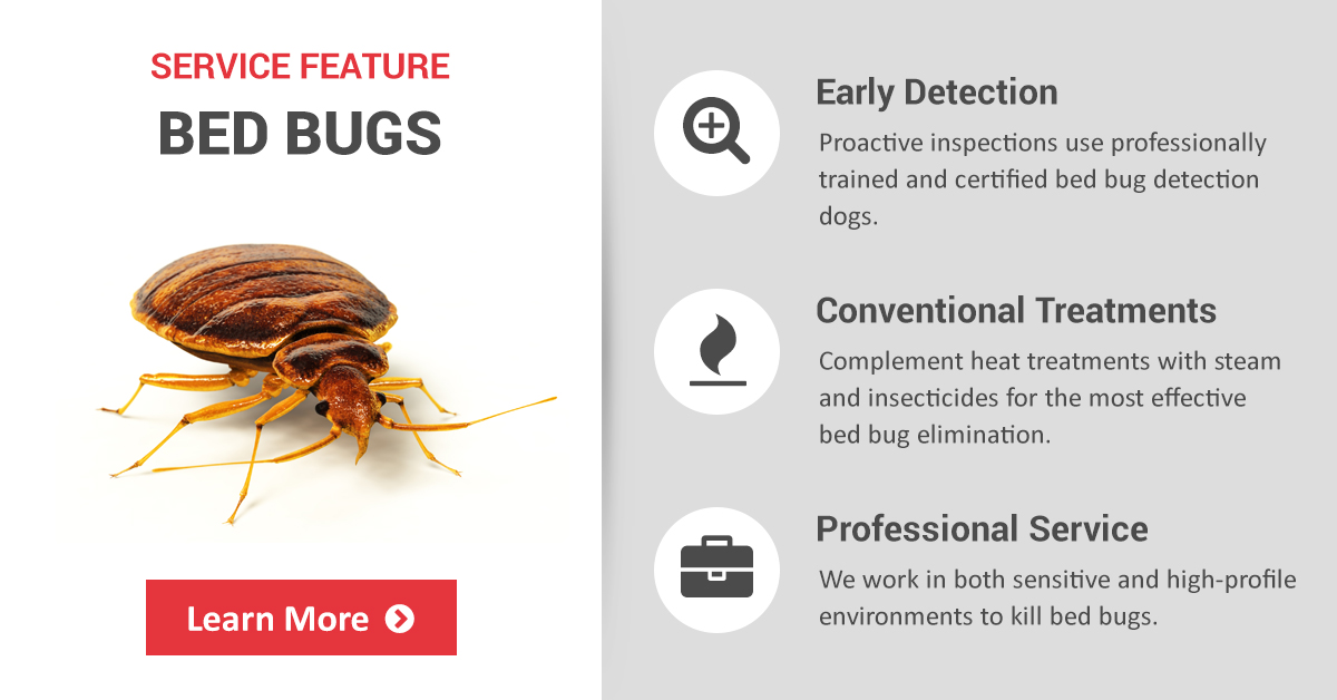 commercial bed bug treatment control prevention copesan pest